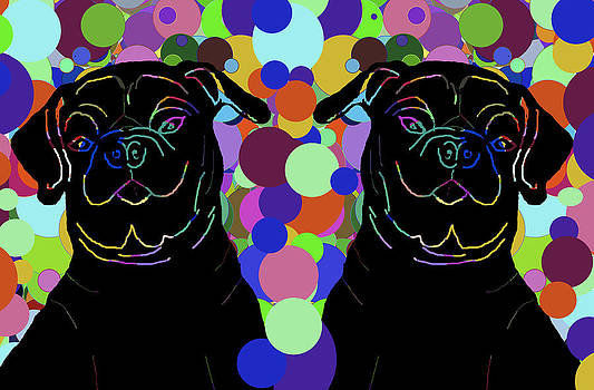 Twin Pugs 1 by Chris Goulette