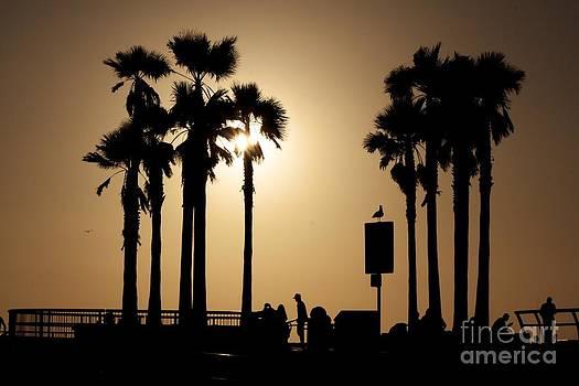 Venice Beach Sunset 2014 by Lena Jolly