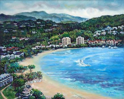 View From Jamaica Grand 2 by Ewan  McAnuff