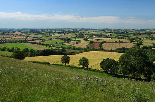 View from Raddon Top by Pete Hemington