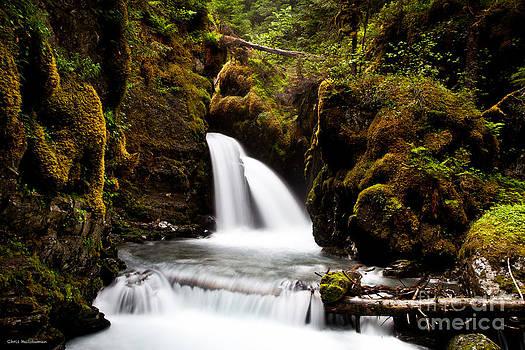 Virgin Creek Falls by Chris Heitstuman