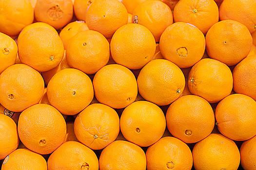 Gunter Nezhoda - Vitamin C