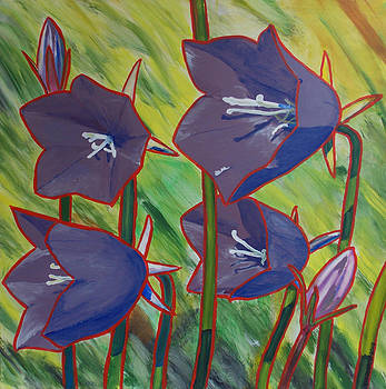 Vivid Bluebells by Jeff Forrest