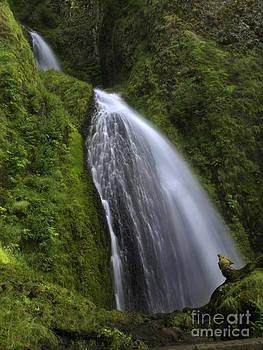 Tim Moore - Wahkeena Falls
