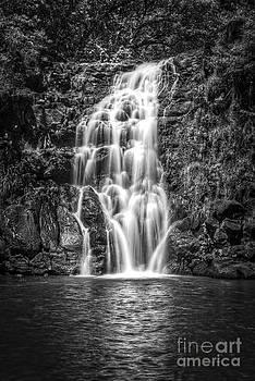 Waimea Falls by John Perez
