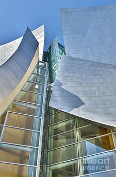 David Zanzinger - Walt Disney Concert Hall Vertical Los Angeles CA