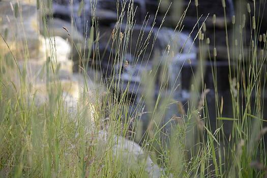 Teo SITCHET-KANDA - Water Is Life 2