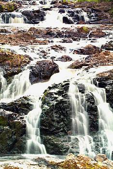 Devinder Sangha - Waterfall