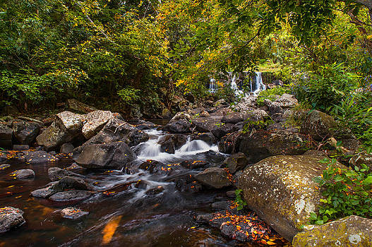 Jenny Rainbow - Waterfalls of Eureka. Mauritius