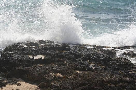 Wave Action by Cheri Carman