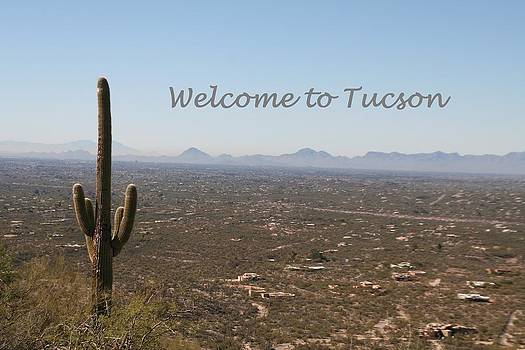 Welcome to Tucson by David S Reynolds
