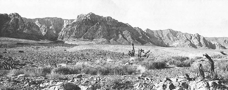 Frank Wilson - Western Desolation