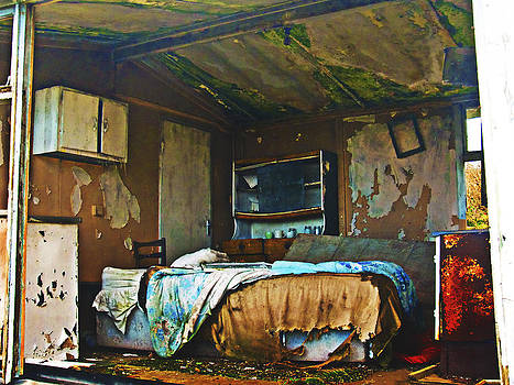 Where do they sleep now by Tony Reddington