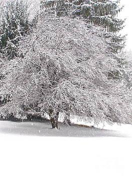 LeLa Becker - White as Snow