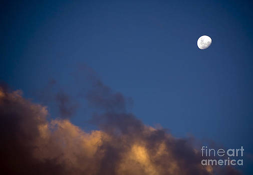 Tim Hester - White Moon and Dusk Clouds