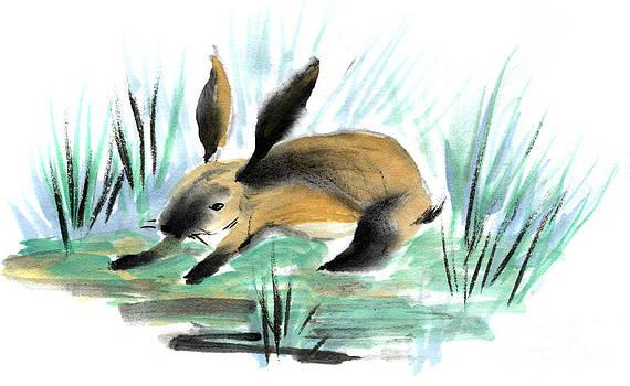 Ellen Miffitt - Wild Rabbit