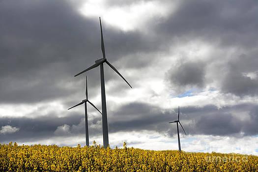 BERNARD JAUBERT - Wind turbines