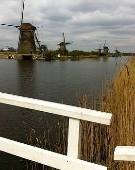Windmills by Andreea O'Hara