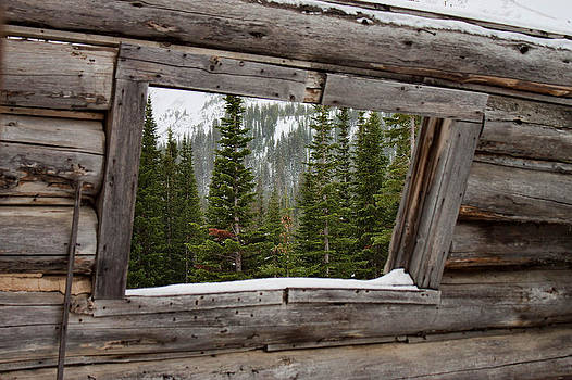 Window With A View by Stormy Wilson