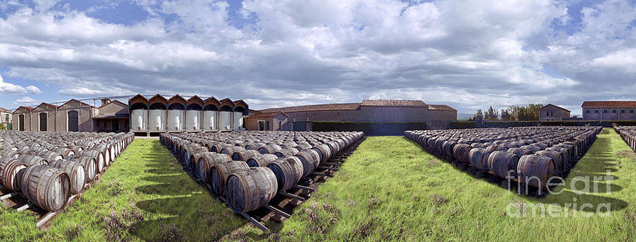 David Zanzinger - Winery wine barrels outside clouds Panorama