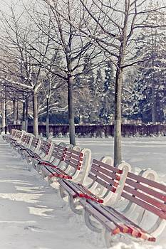 Winter Benches by Ioana Todor