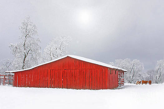 Winter Barn by Pam Carter
