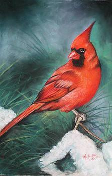 Winter Cardinal by Melinda Saminski
