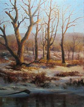 Winter Marsh and Beyond by Bill Puglisi