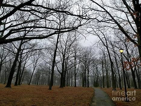 Christine Stack - Winter Park