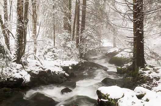 Winter river by Svetoslav Radkov