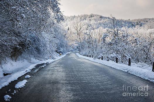 Elena Elisseeva - Winter road