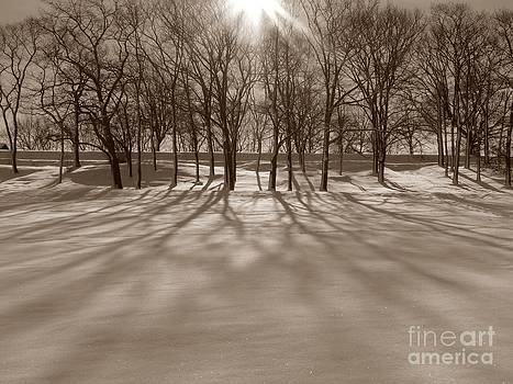 Christine Stack - Winter Shadows