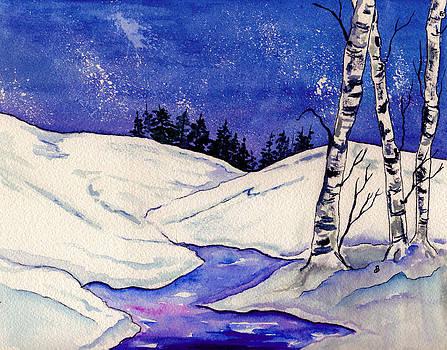 Winter Sky by Brenda Owen
