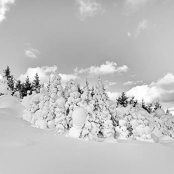 Winter time by Frodi Brinks
