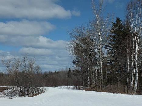 Winter Trail by Gene Cyr