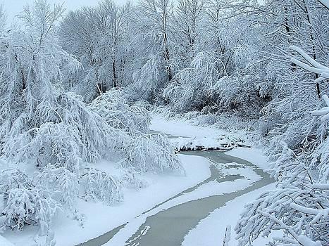 Winter Wonder by Pierre Labrosse