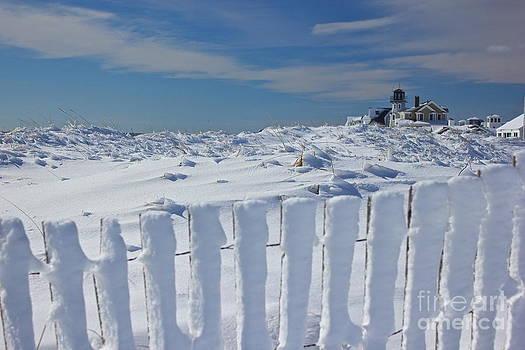 Amazing Jules - Winter Wonderland