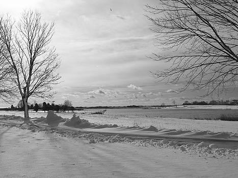 Wintery Coast by Patricia McKay