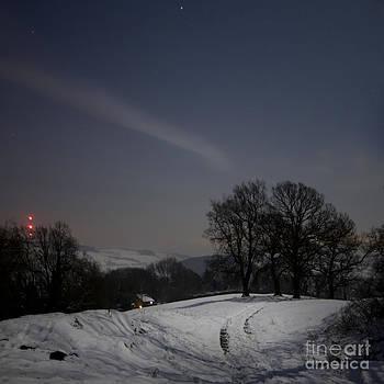 Angel Ciesniarska - Wintery landscape in the night