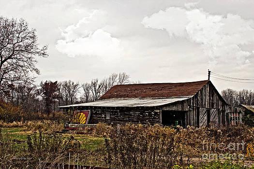 Ms Judi - Wisconsin Old Barn 10