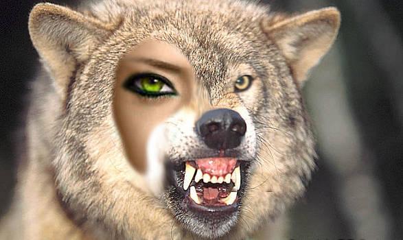 Wolf Hybrid by Karl Emsley