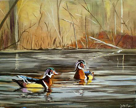 Wood Duck Duo by Janet Glatz