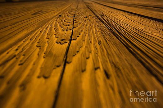 Wood by Mina Isaac