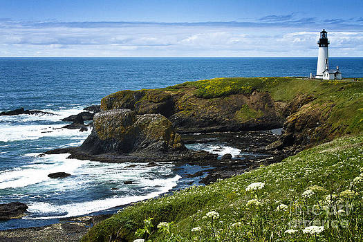 Yaquina Head Lighthouse by Carrie Cranwill