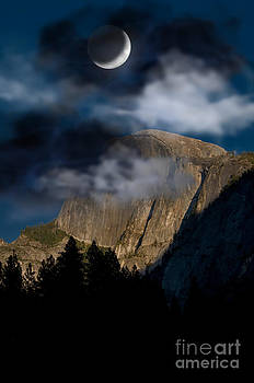 Mark Newman - Yosemite National Park