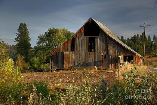 Yourn Barn by Sam Rosen
