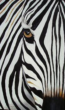 Zebra Abstract by Vanessa Lomas