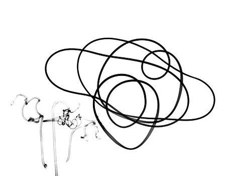 Plant Tendrils by Albert Koetsier X-ray