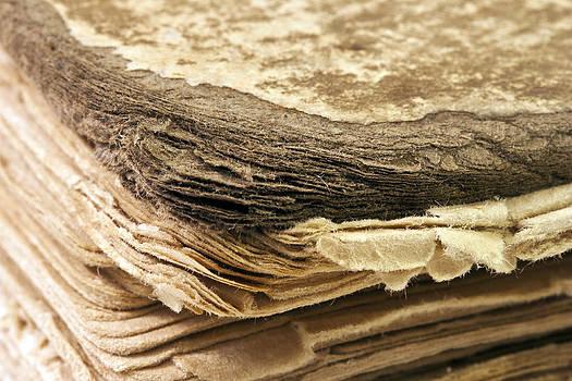 Sandra Foster - 100 Year Old Book Macro