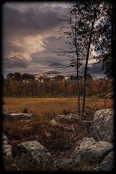 101714-415 by Mike Davis
